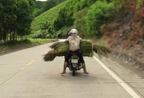 Chít đót: Lộc rừng đầu xuân ở xứ Quảng