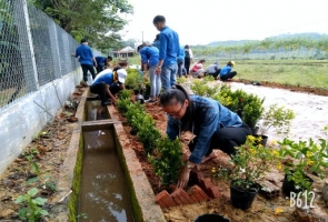 """Phú Ninh phát động cuộc thi """"Vườn - tường - đường đẹp"""""""