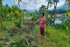 TIÊN PHƯỚC- Sạt lở bờ sông đe dọa cuộc sống nhiều hộ dân