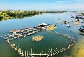 Bình yên sông nước xứ Quảng