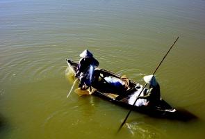 Mùa cá mòi sông Thu