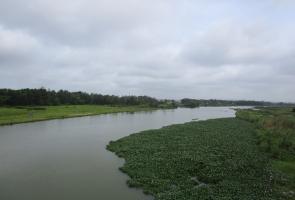 Thăng Bình- Làng Quảng Phú xưa