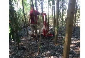Núi Thành- Dập cháy rừng, phát hiện thi thể người đàn ông 78 tuổi