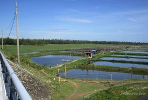 Mấy tư liệu từ làng Phú Quý Hạ xưa
