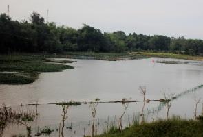 Tam Kỳ- Đi câu cá, một thanh niên bị đuối nước thương tâm