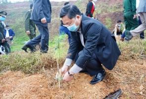 """Ra quân thực hiện """"Tết trồng cây"""" Xuân Tân Sửu năm 2021"""
