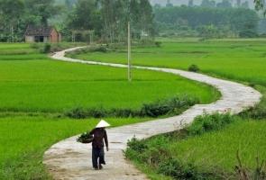Quảng Nam - Chiều sâu một vùng đất
