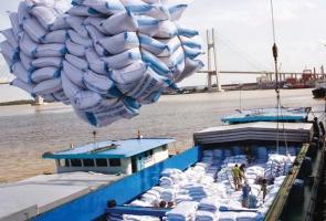 Tạm dừng thông quan xuất khẩu gạo